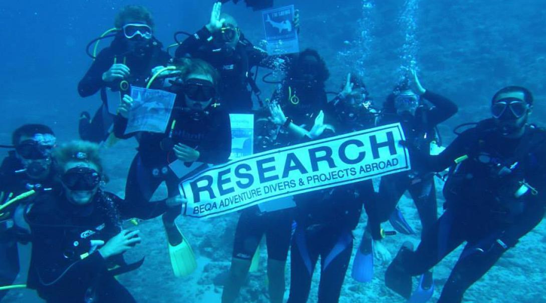 Hajforskningsvolontärer håller upp en forskningsskylt under deras dyk i Fiji.
